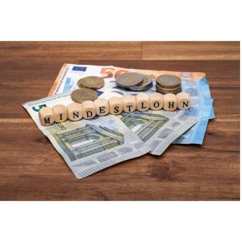 dinero minimo para vivir